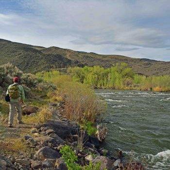 Month-Long Truckee River Celebration