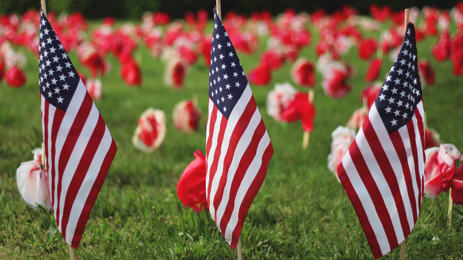 10 Tips for Commemorating Memorial Day Weekend During COVID-19