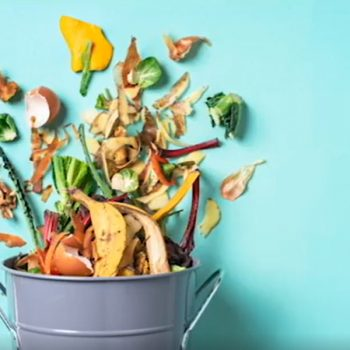 Keep Montgomery County Beautiful and Montgomery County Environmental Services Share Composting Tips