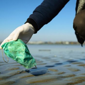 Keep Tampa Bay Beautiful Collects Hundreds of PPE Items on Local Beaches