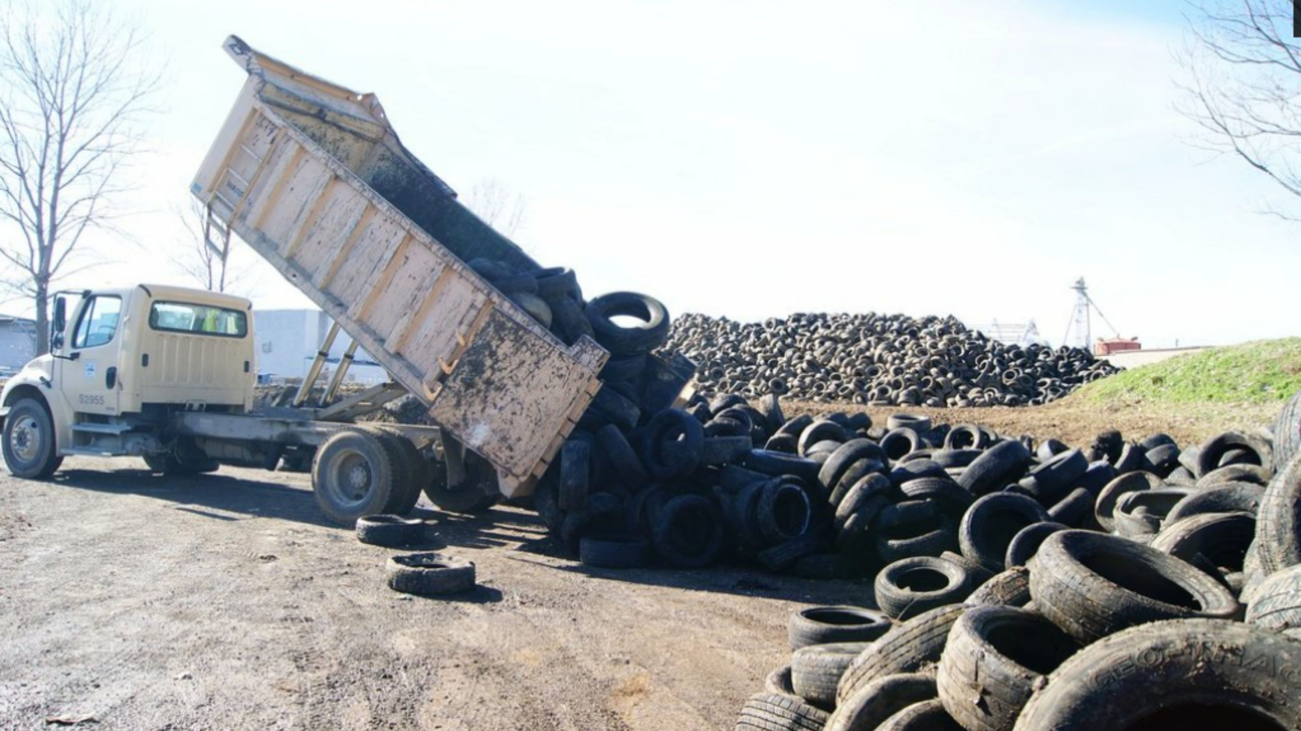 Memphis City Beautiful Commission Gives New Life to Discarded Tires
